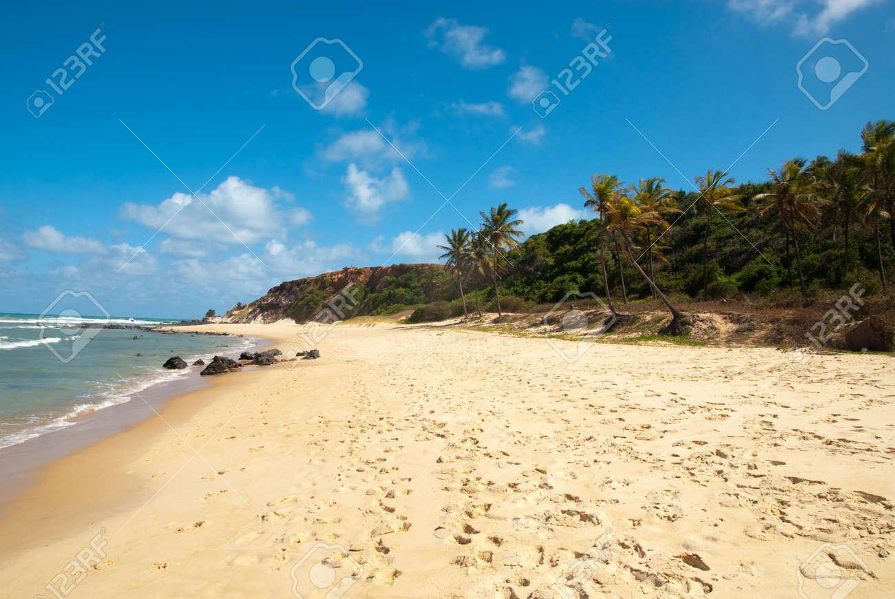 Beautiful beach with palm trees at Praia do Amor near Pipa Brazil Standard-Bild - 6354856