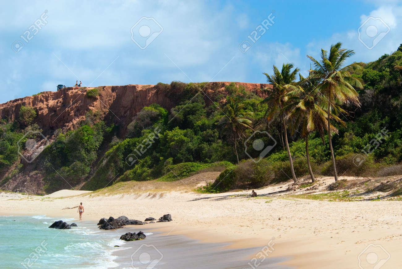 Beautiful beach with palm trees at Praia do Amor near Pipa Brazil Standard-Bild - 6355039