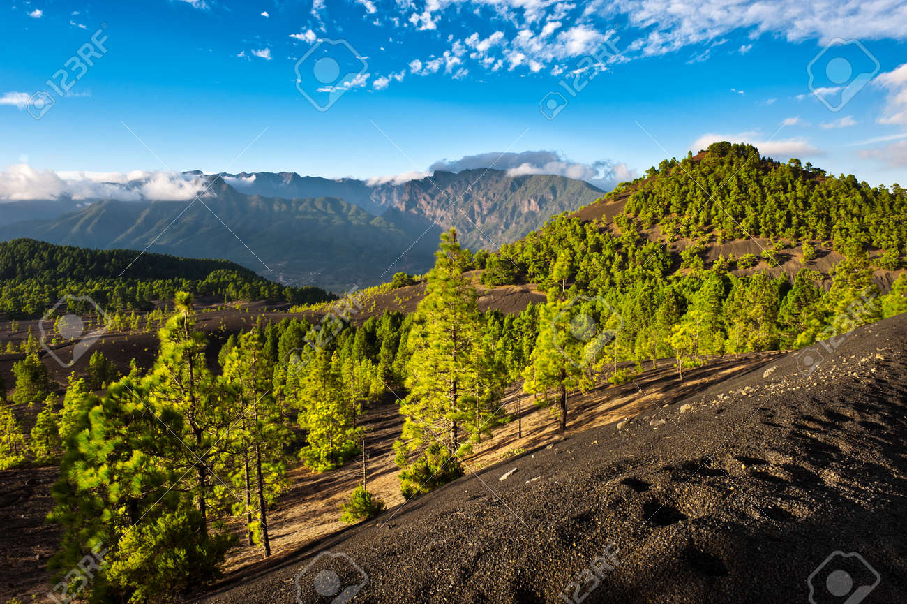 Beautiful lava landscape on the Cumbre Nueva in La Palma, Canary islands, Spain Standard-Bild - 8818914