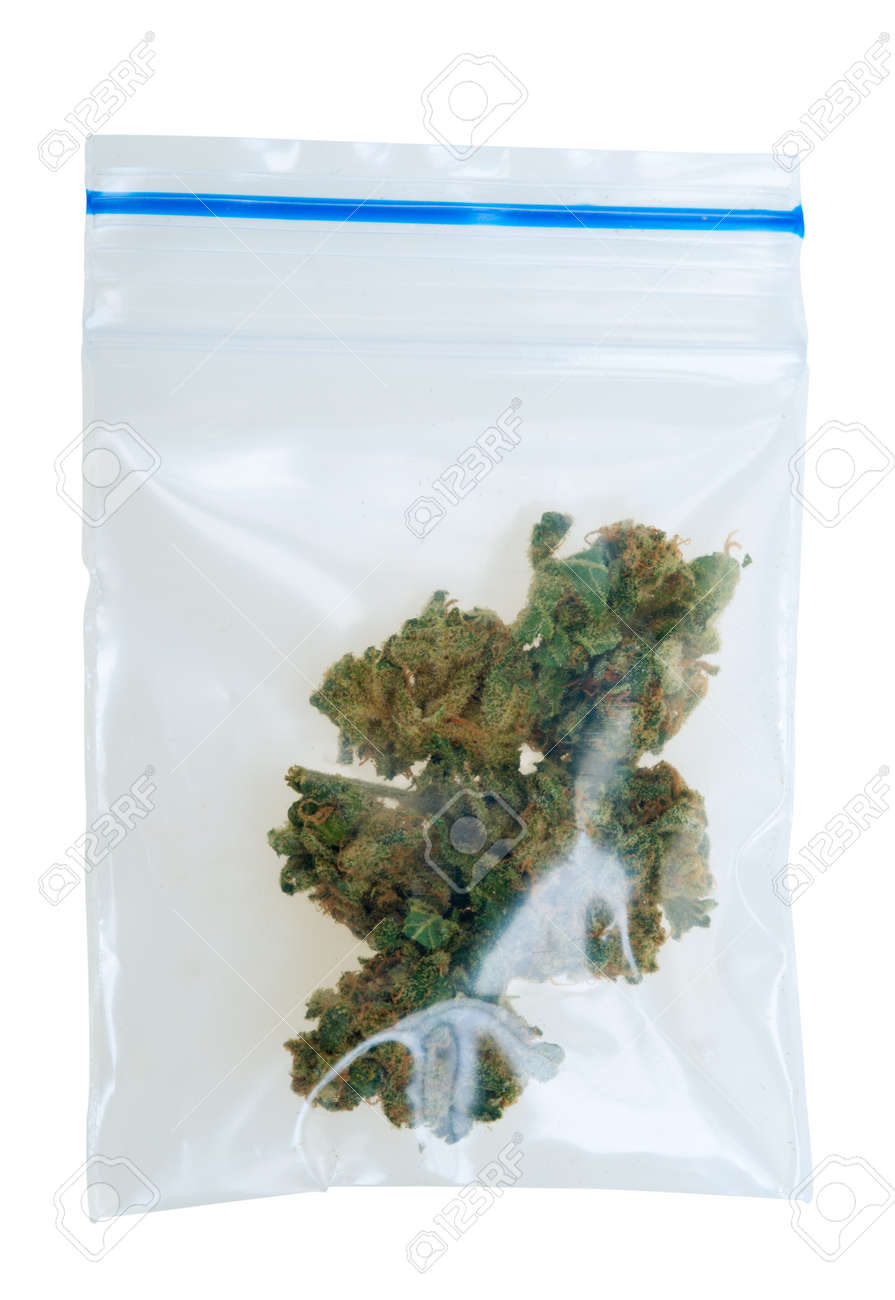 Cannabis in a plastic bag , Photo taken with a macro lens, isolated on a white background Standard-Bild - 8821904