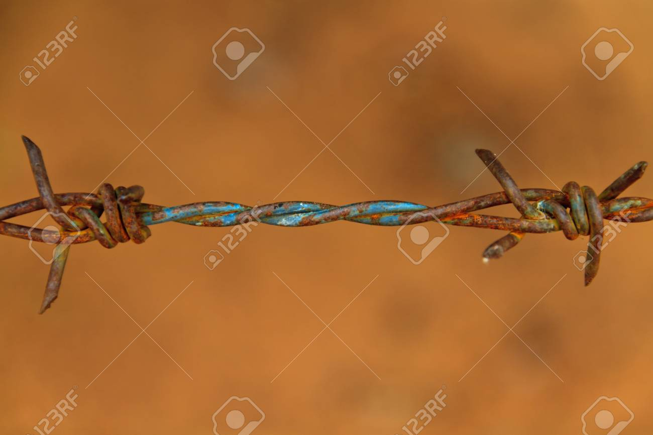 Close-up rust barbed wire Stock Photo - 9391187