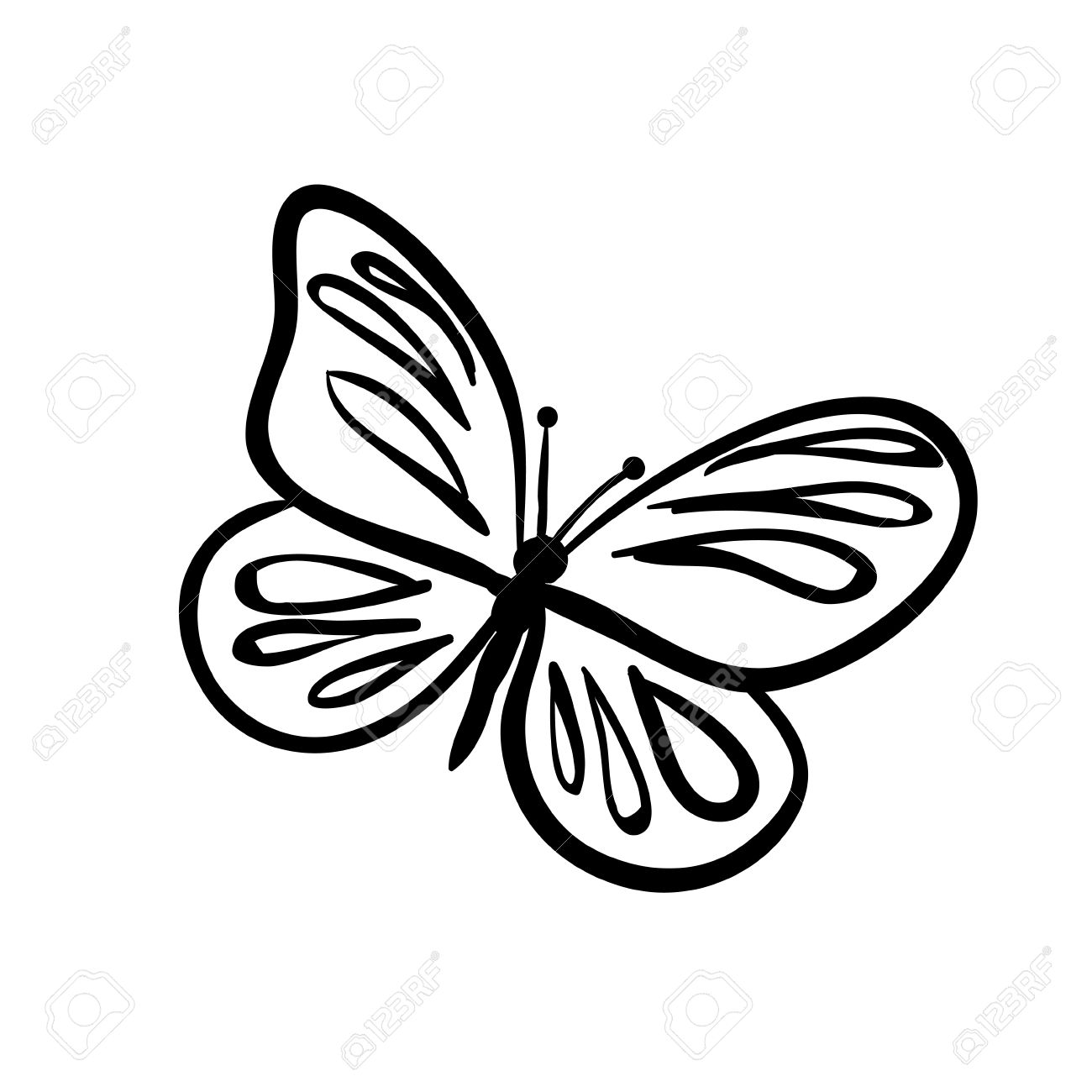 Vector vector hand drawn butterfly black sketch on white background