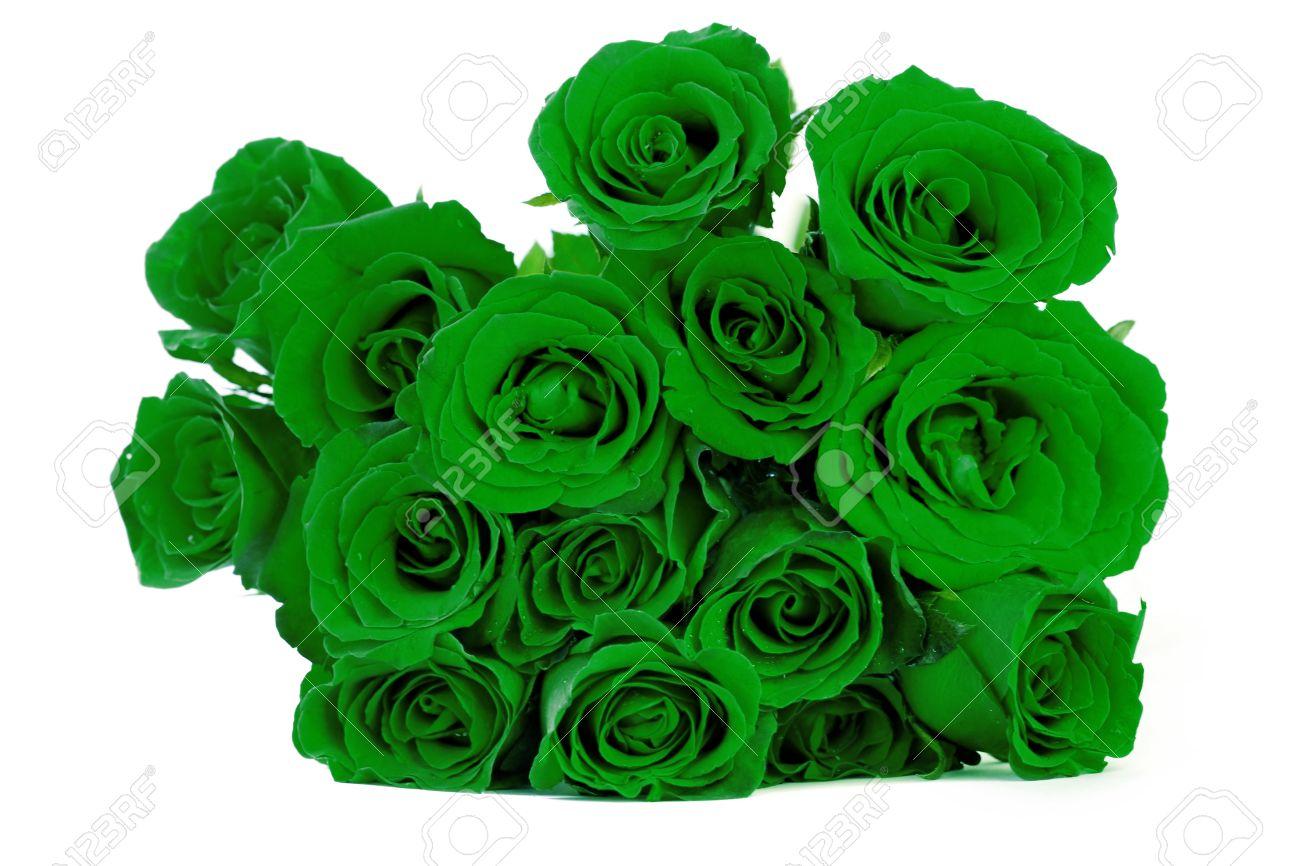 Green Roses Bouquet On White Background Stock Photo Picture And Royalty Free Image Image 30704125