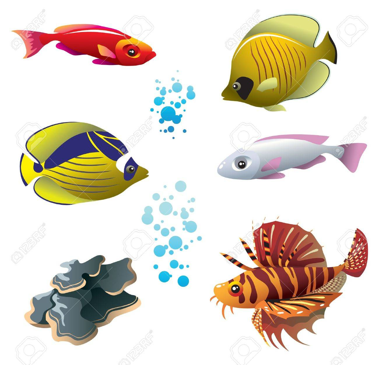 Set of tropical bright fishes and polyp, vector illustration Stock Vector - 9255376