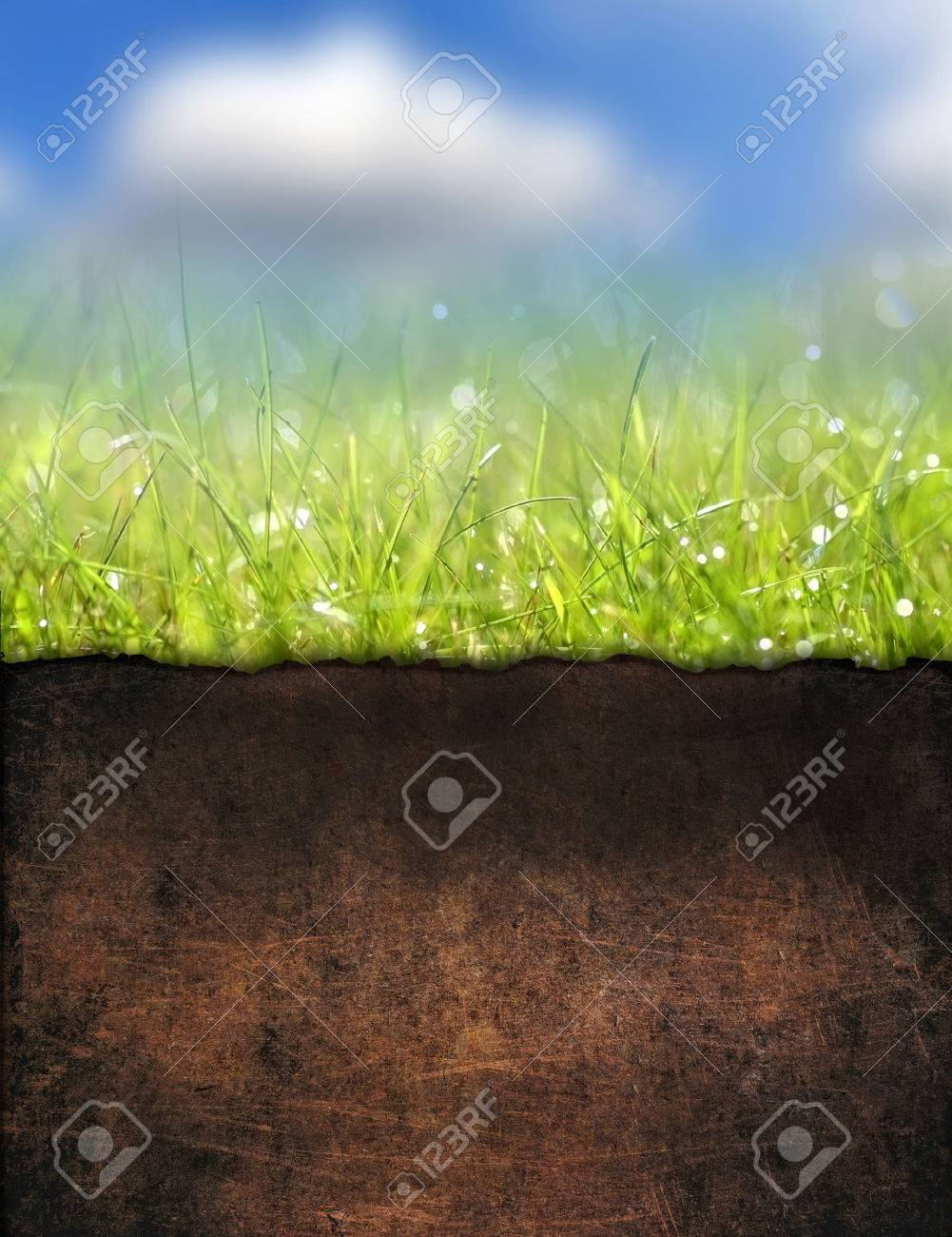 Underground soil Stock Photo - 23053381