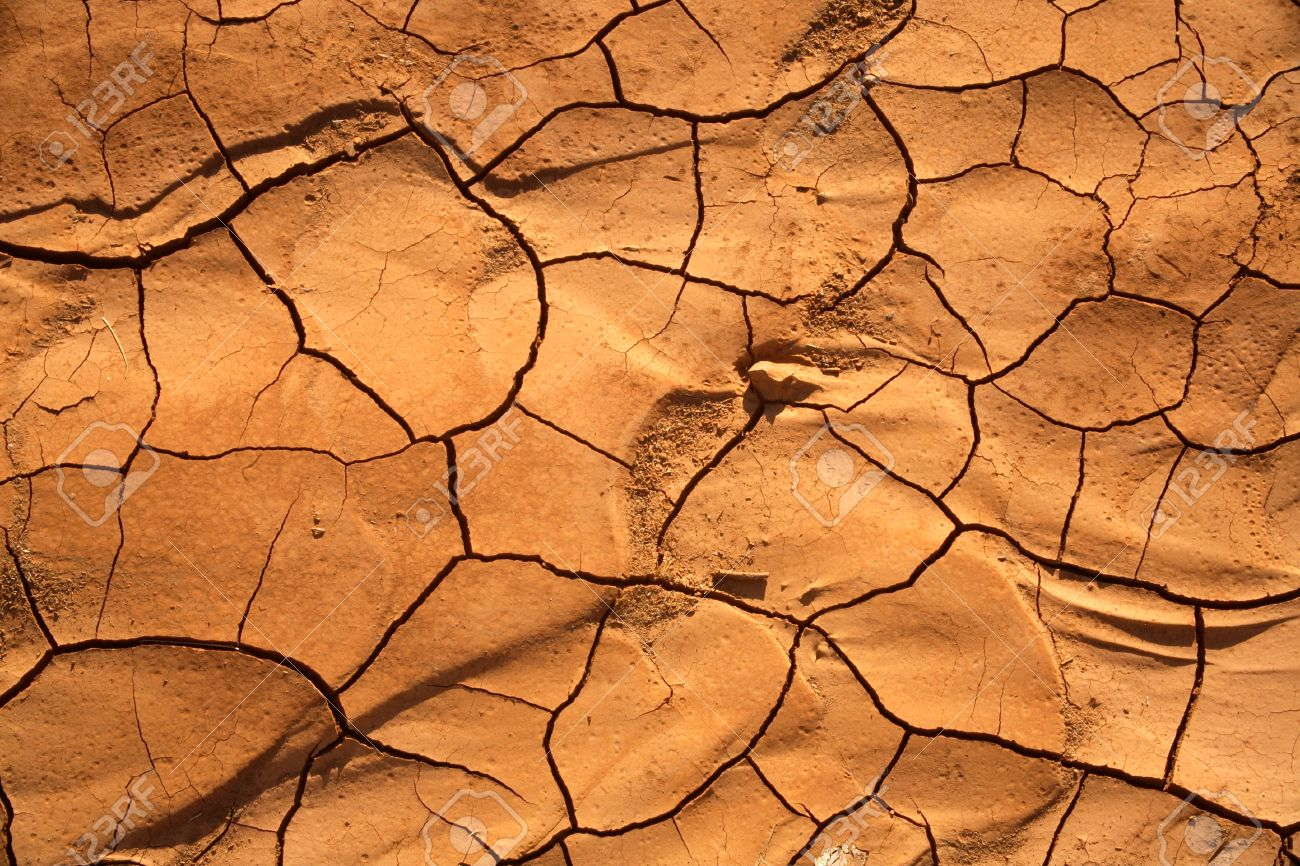 Close up view of a cracked dry clay surface in a desert stock close up view of a cracked dry clay surface in a desert stock photo 39088902 sciox Images