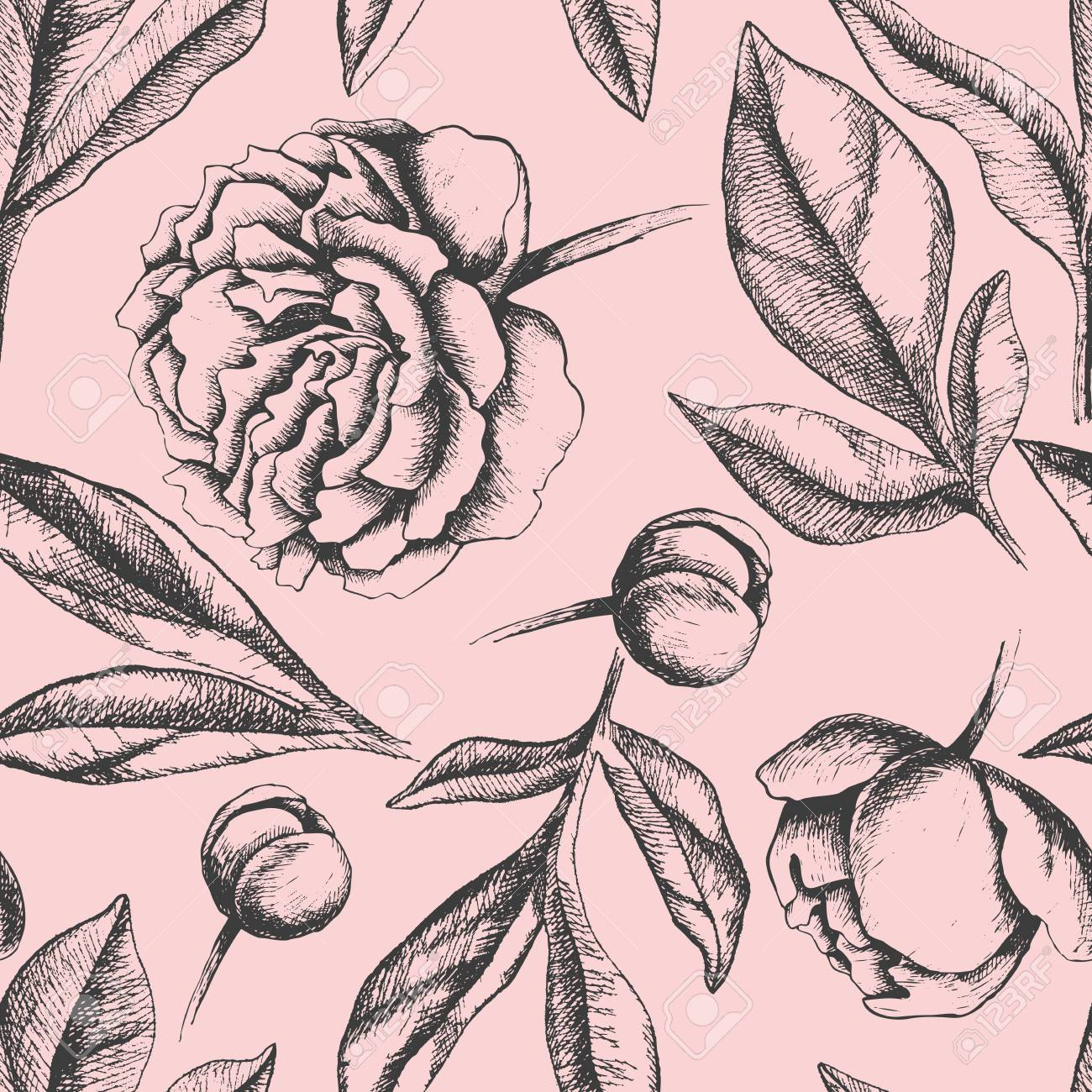 Vintage Elegant Pattern With Peony Flowers Black And White Ink