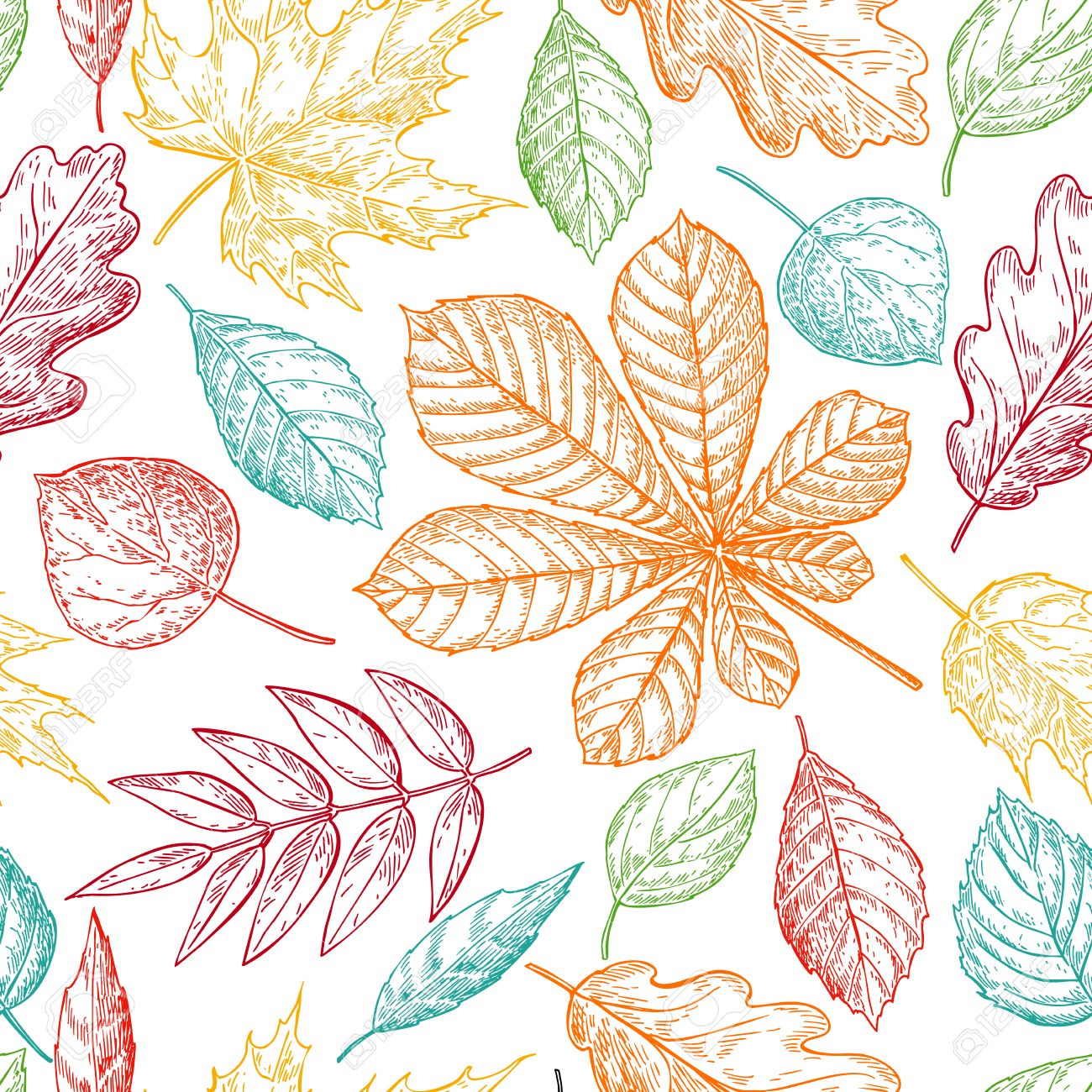 Seamless Vector Pattern With Colorful Autumn Leaves. Hand Drawn ...