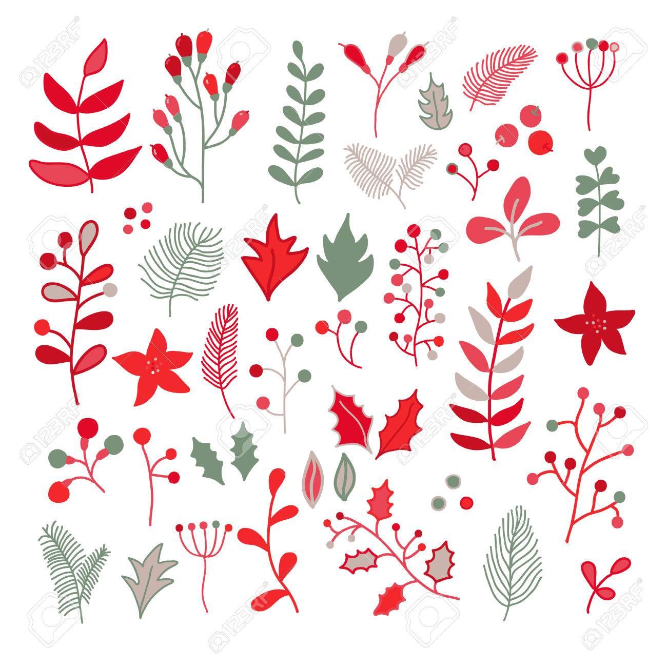 Navidad Floral Vector Conjunto De Dibujos Con Acebo Flor De Pascua