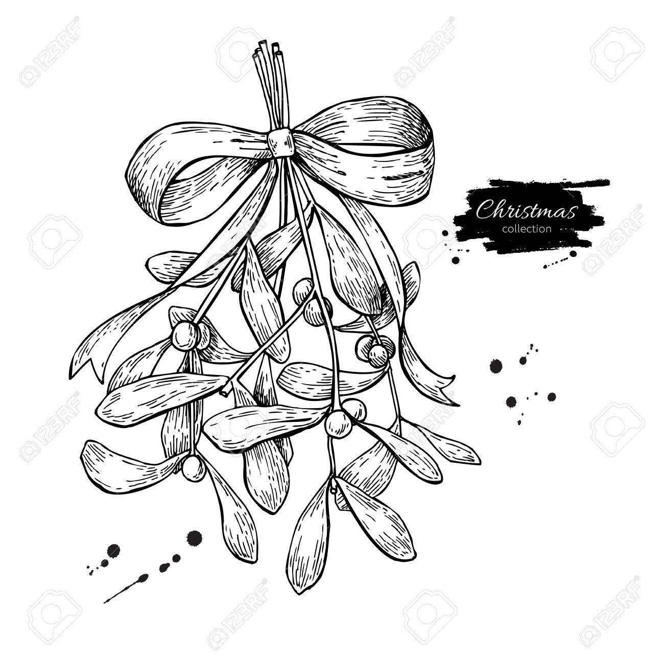 Mistletoe With Bow And Ribbon Christmas Decor Plant Hand Drawn Vector Illustration Botanical