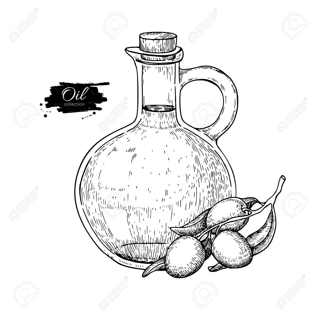 Bottle Of Olive Oil And Branch Vector Hand Drawn Illustration Glass Pitcher Vintage