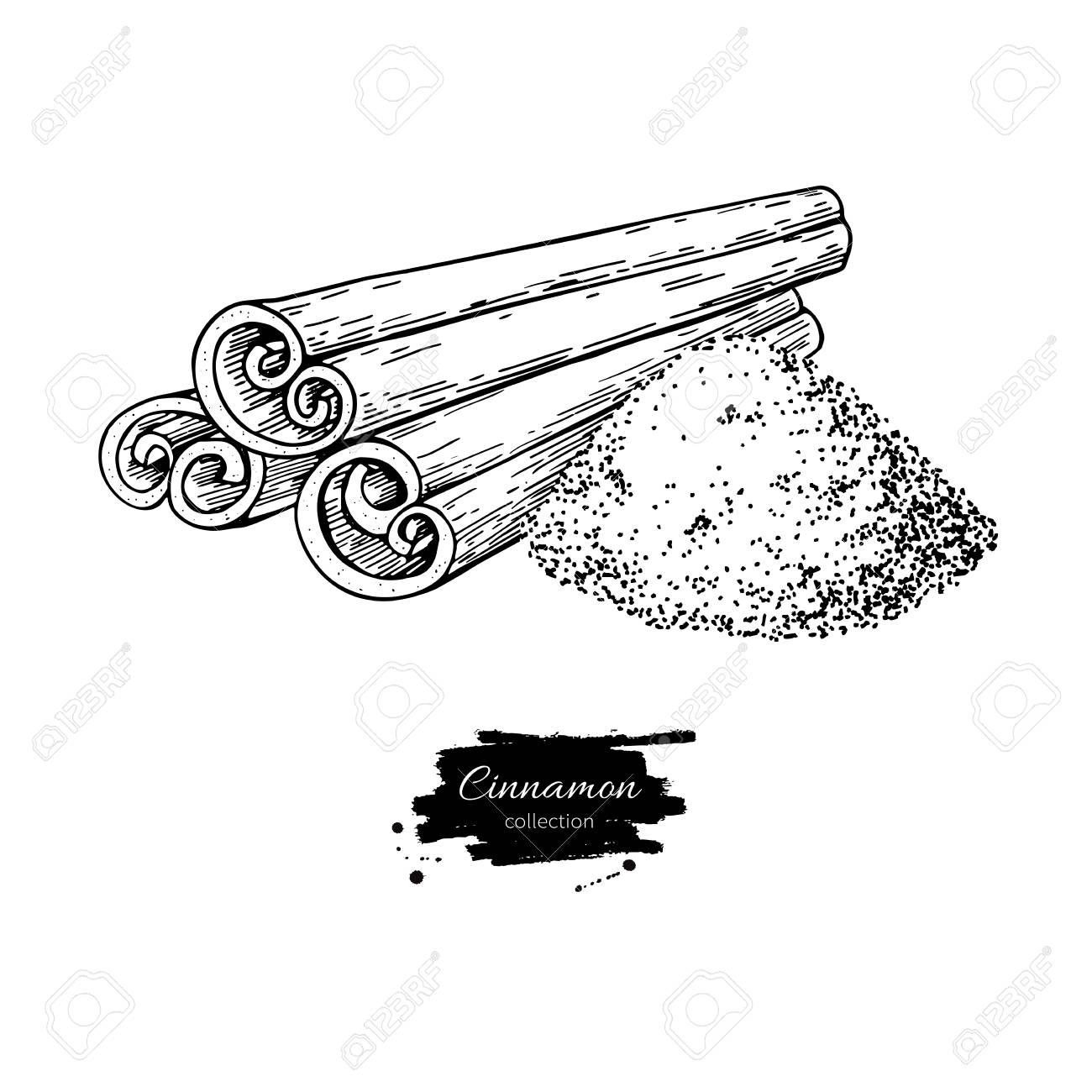 Bâton De Cannelle Et Dessin Vectoriel De Poudre Croquis Dessiné Main Nourriture Saisonnière