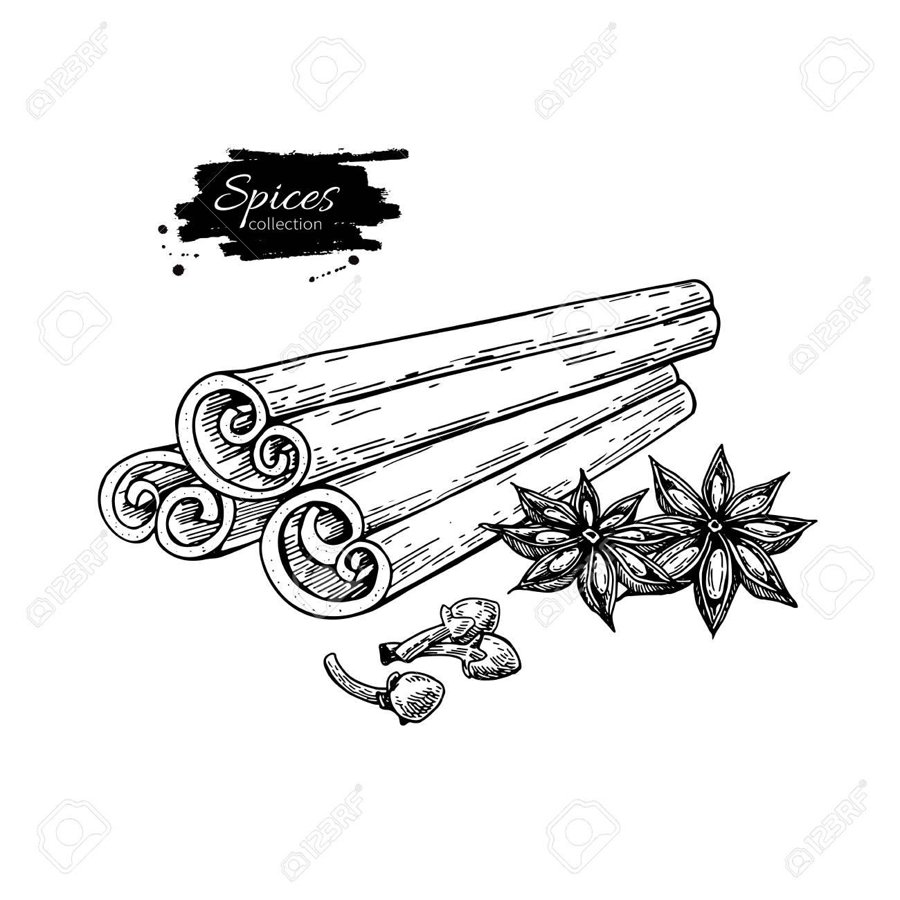 Bouquet De Cannelle Bouquet D Anis Et Clous De Girofle Dessin Vectoriel Croquis Dessiné Main Illustration De La Nourriture Saisonnière Isolée Sur