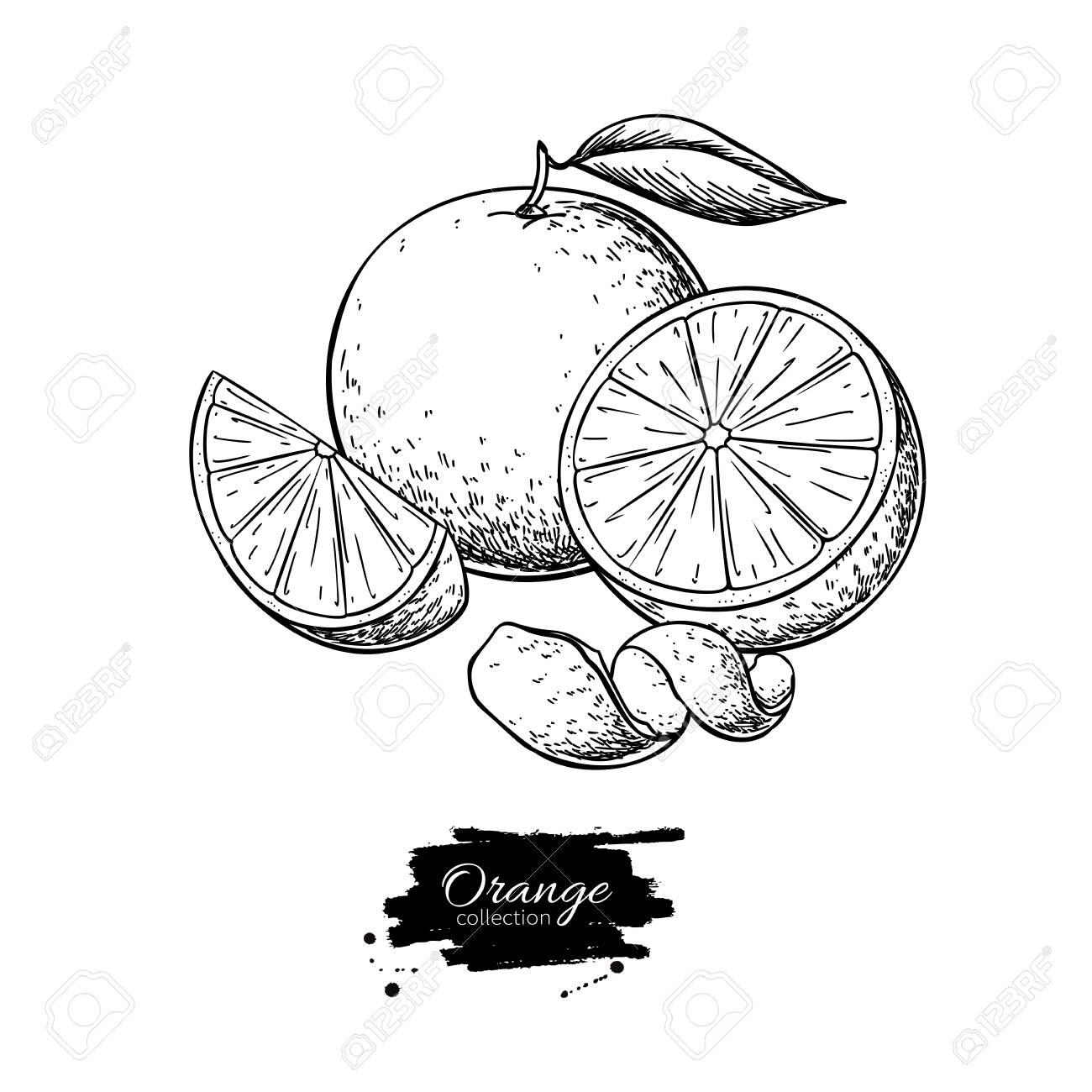 Orange drawing. - 121013439