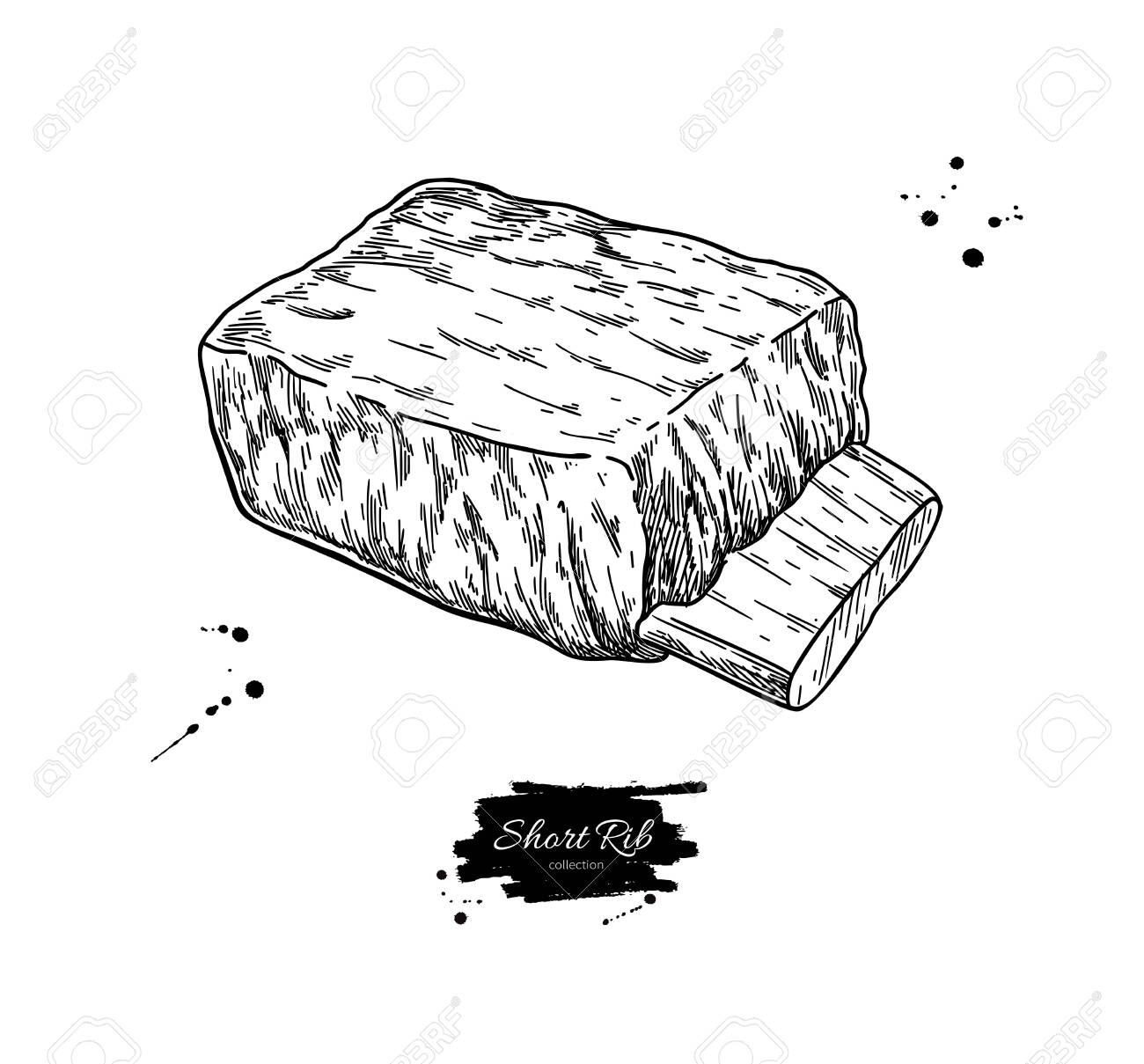 short rib vector drawing beef pork or lamb meat hand drawn royalty free cliparts vectors and stock illustration image 137446028 short rib vector drawing beef pork or lamb meat hand drawn