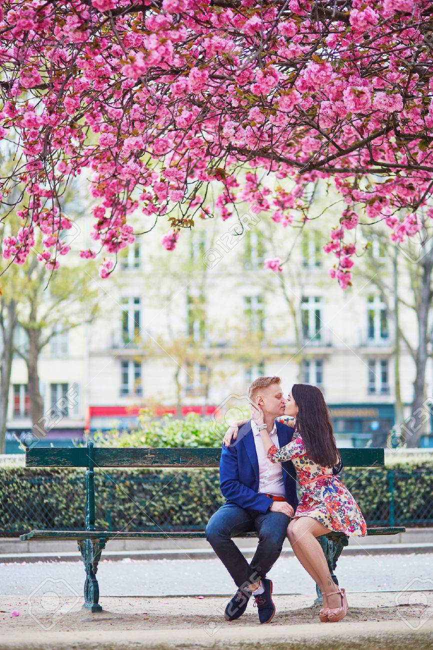Cherry blossoms dating free