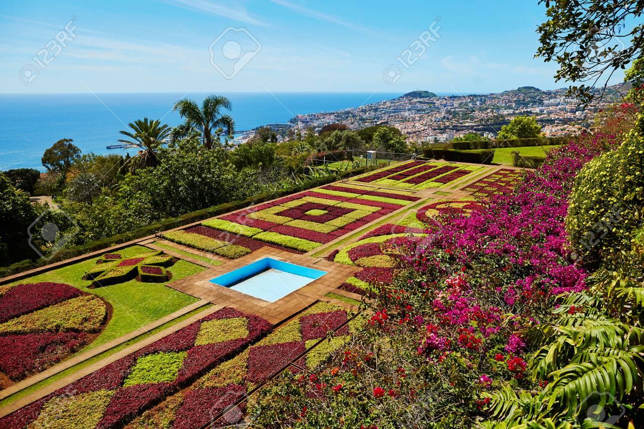 Berühmter Botanischer Garten In Funchal Madeira Insel Portugal