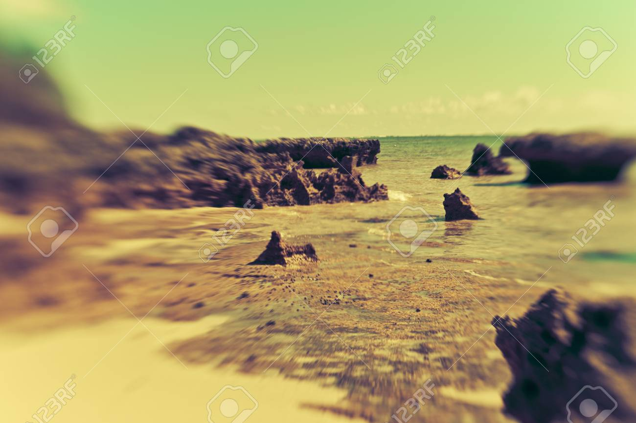 coastline of tropical Lord Howe Island. photograped with lens baby for dreamy abstract effect. Stock Photo - 9764277