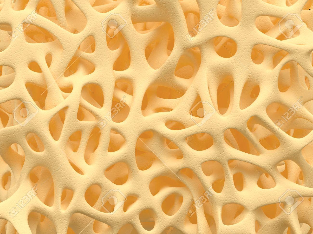 Bone spongy structure close-up, healthy texture of bone - 35870563
