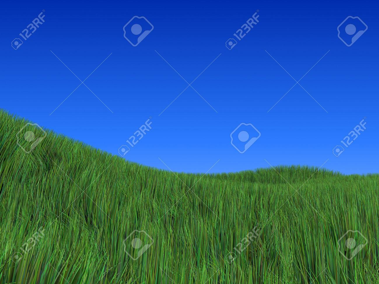 wide field Stock Photo - 1066570