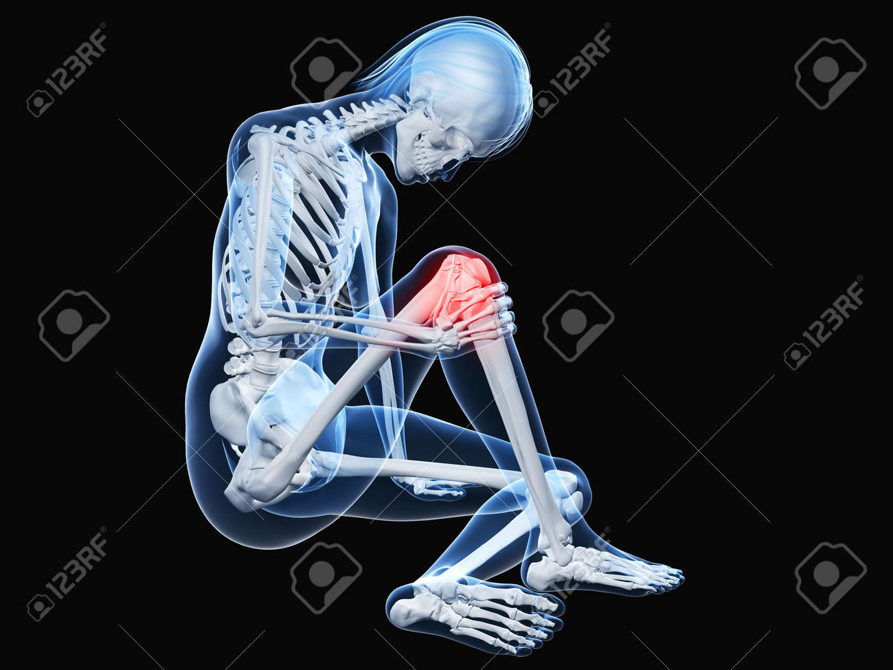 sitting female skeleton with highlighted knee Stock Photo - 7165066