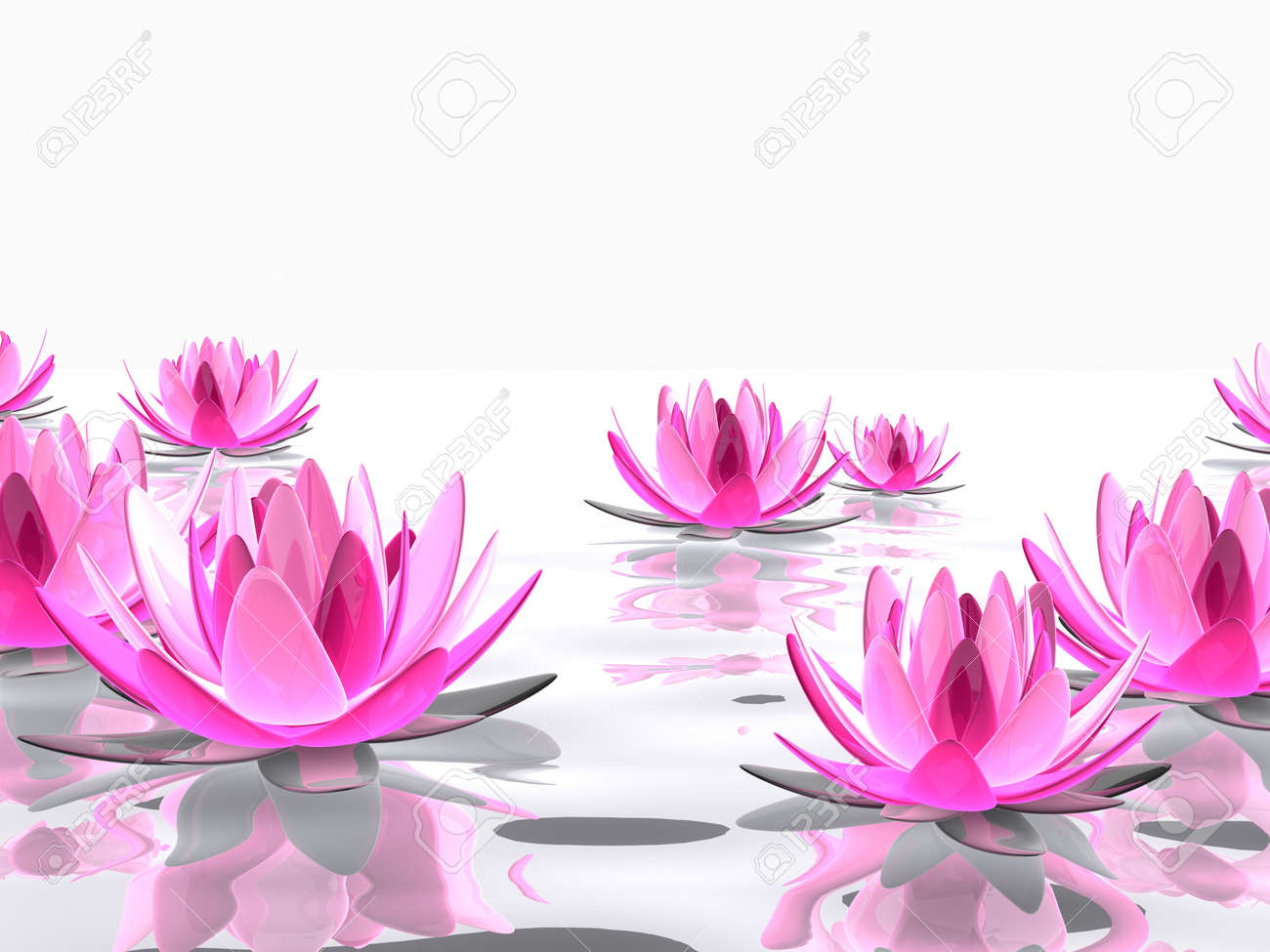 lotus flowers on water Stock Photo - 7165137