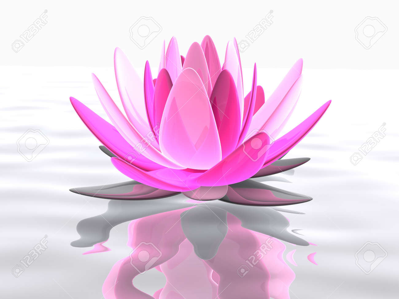 Lotus Flower On Water Stock Photo Picture And Royalty Free Image