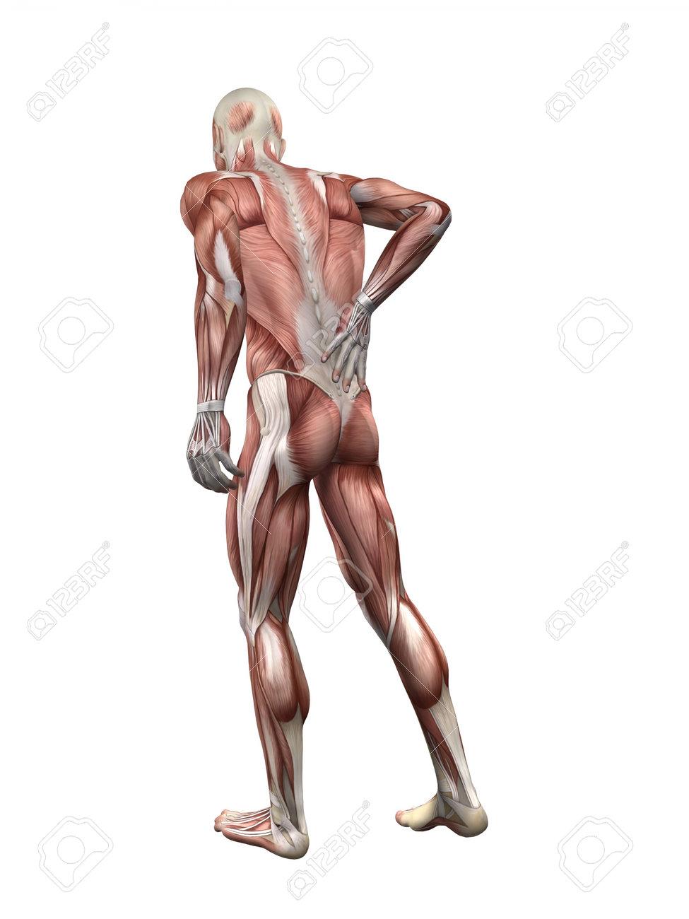 「腰痛 イラスト」の画像検索結果