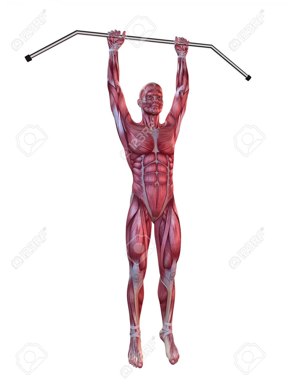male workout - hanging leg raises Stock Photo - 11073135