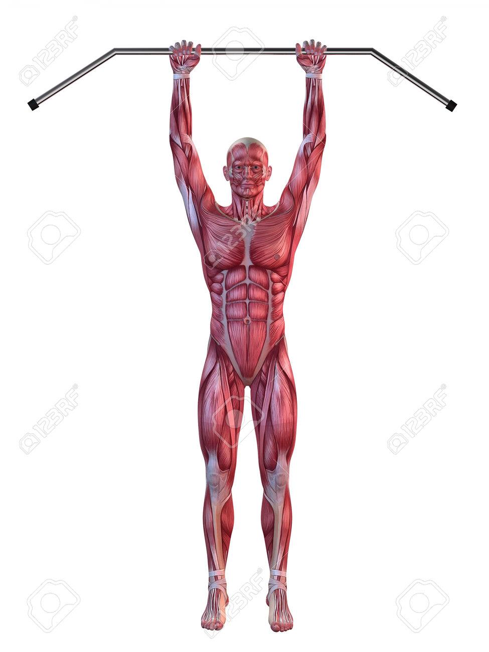 male workout - hanging leg raises Stock Photo - 11073142