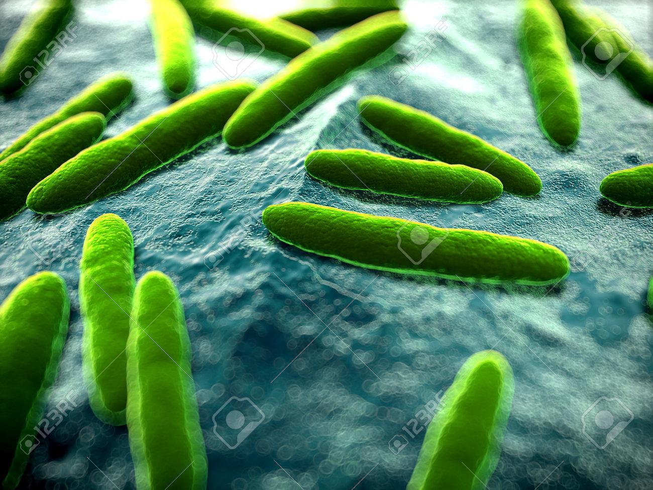 3d rendered scientific illustration of some bacteria Stock Illustration - 13004846