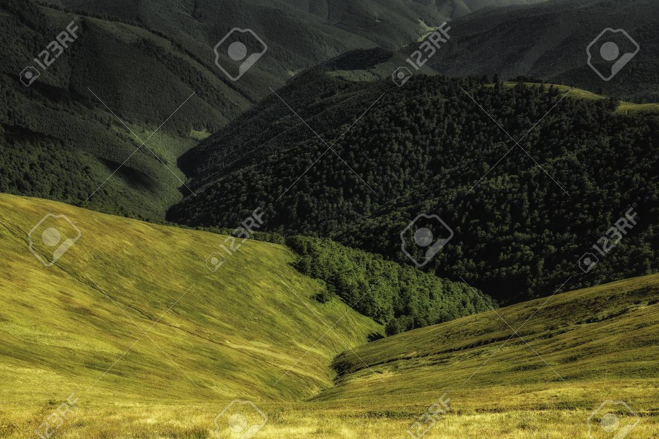Autumn landscape. Autumn view of green Carpathian Mountains , green hills on sunset. Banque d'images - 81996298