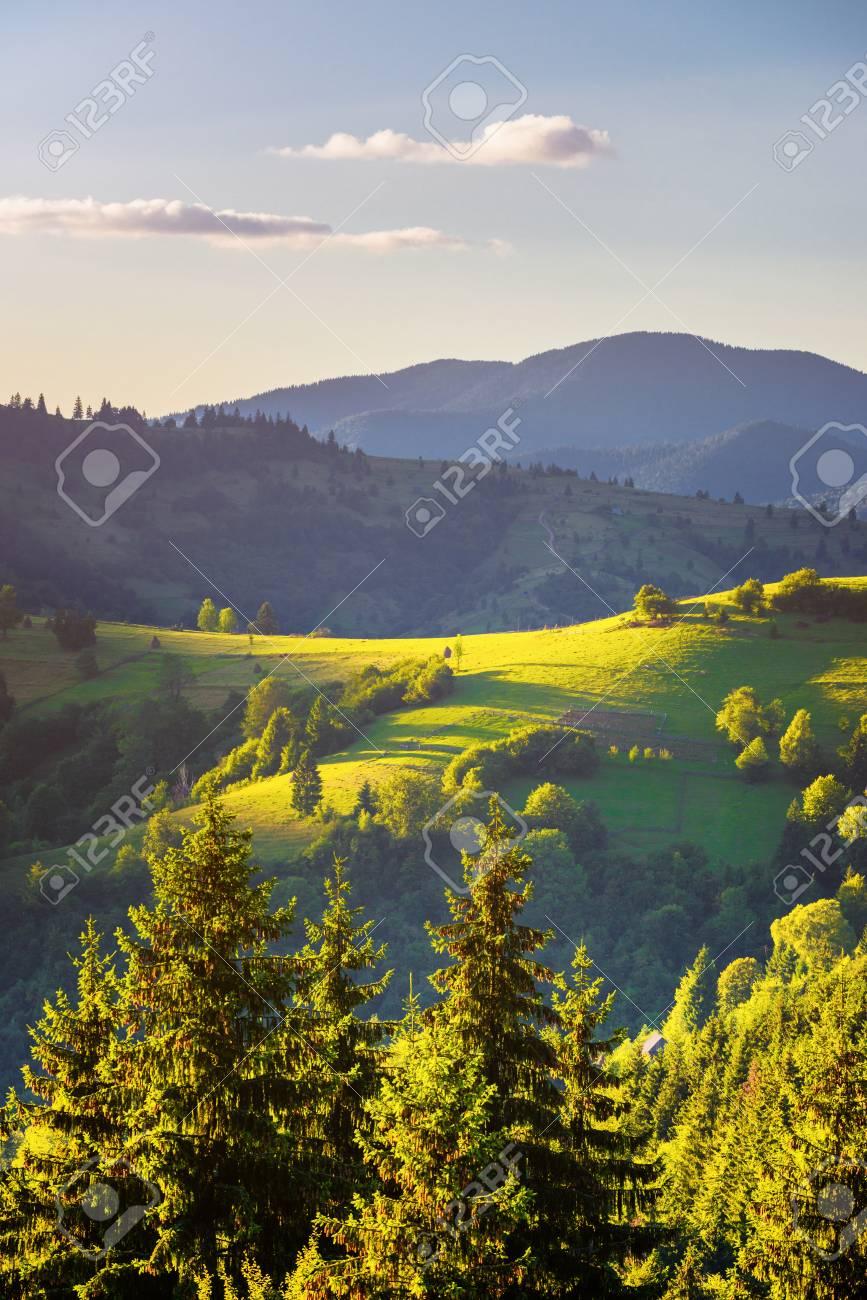 Paysage d'automne. Vue d'automne des montagnes vertes des Carpates. Banque d'images - 82056131