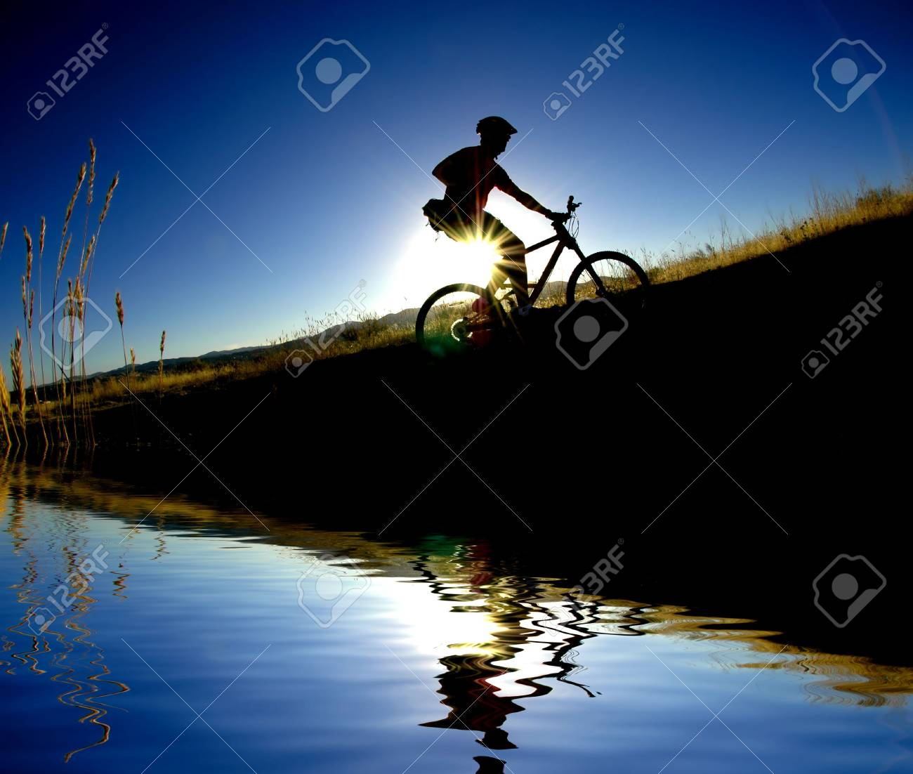 Mountain biking up a trail in the mountains Stock Photo - 2170837