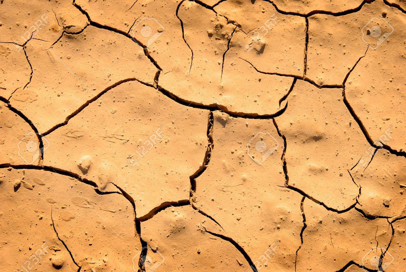 Cracked dry brown ground in drought Stock Photo - 5327352