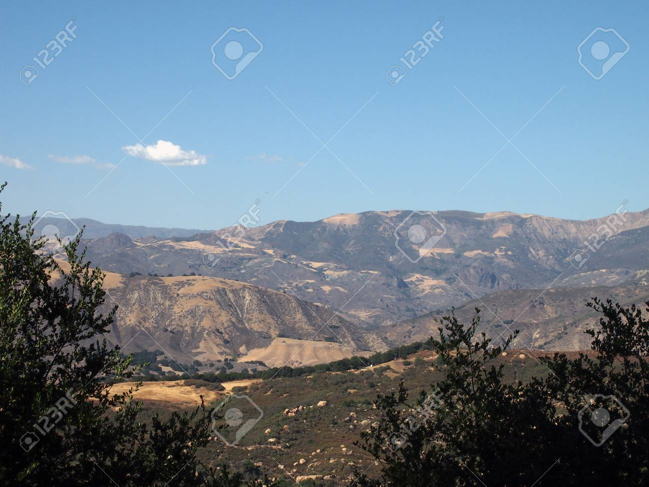 Mountain Landscape of California seen over tops of trees in Santa Barbara area Stock Photo - 18153579