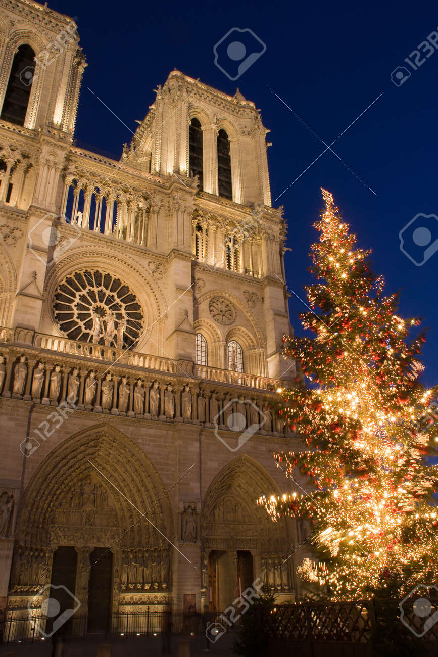 A Christmas Tree In Front Of Notre-Dame Cathedral - Paris, France ...