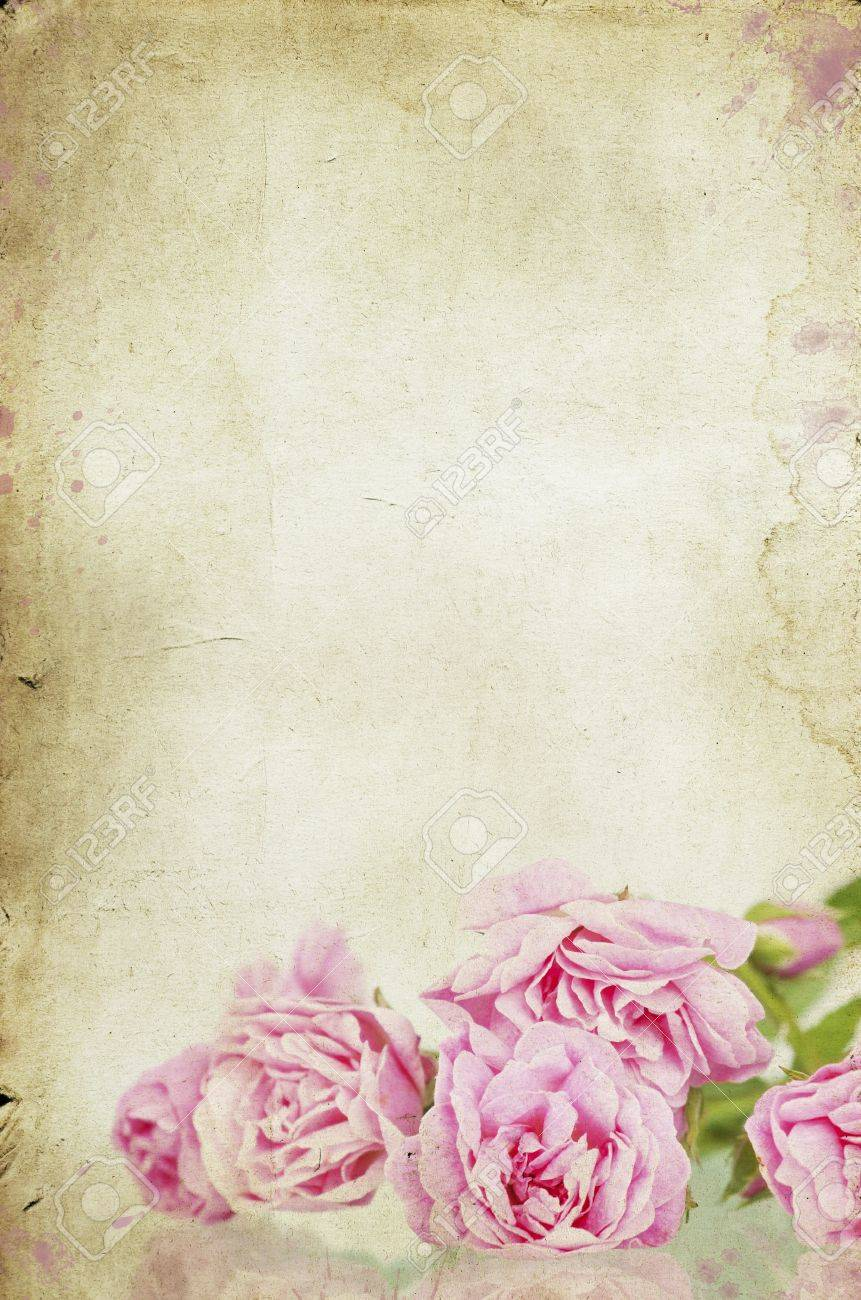 Pink roses on vintage background Stock Photo - 15090201