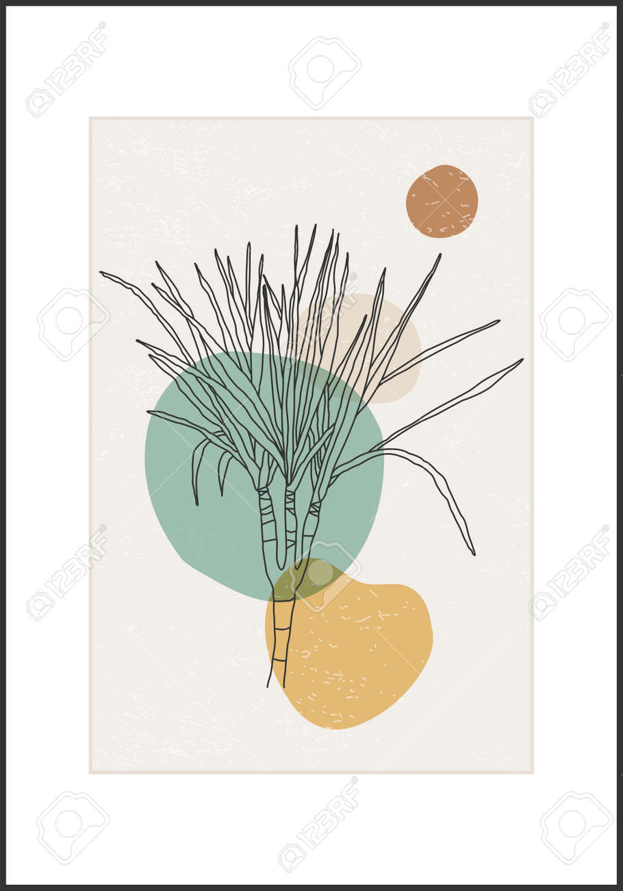 Minimalist botanical line art flower abstract collage - 169626199