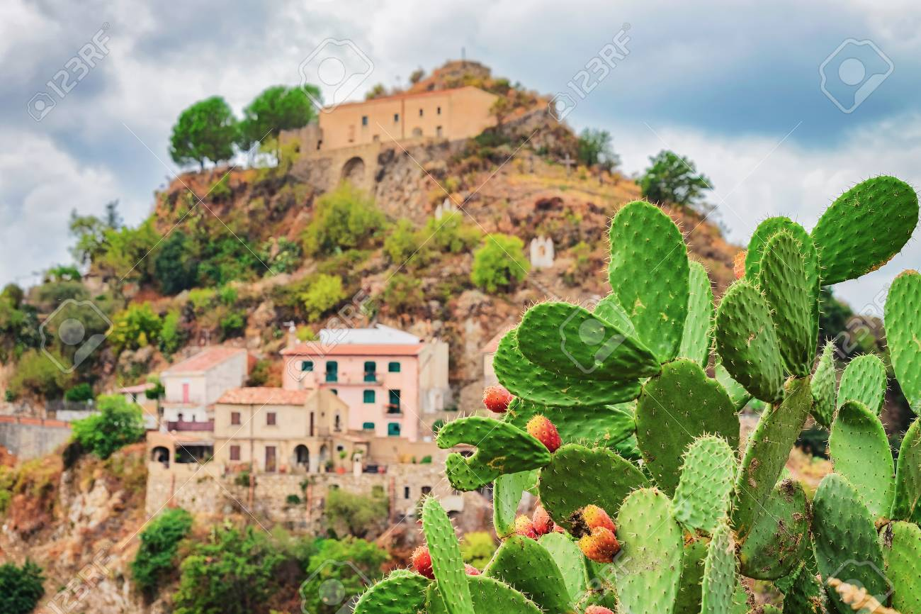 Beautiful landscape with cactus plant and Savoca village on the mountain, Sicily, Italy - 97212319