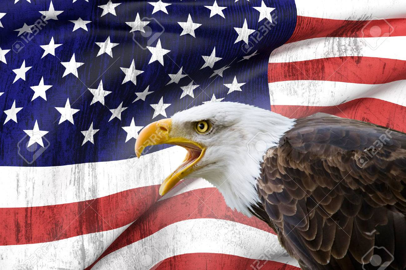 A Beautiful Bald Eagle With A Background Of A Usa Flag Stock Photo