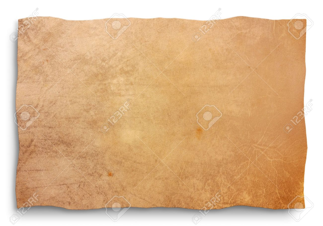 Goat Skin Parchment Blank Sheet For Map Old Banner Signboard Antique Edict