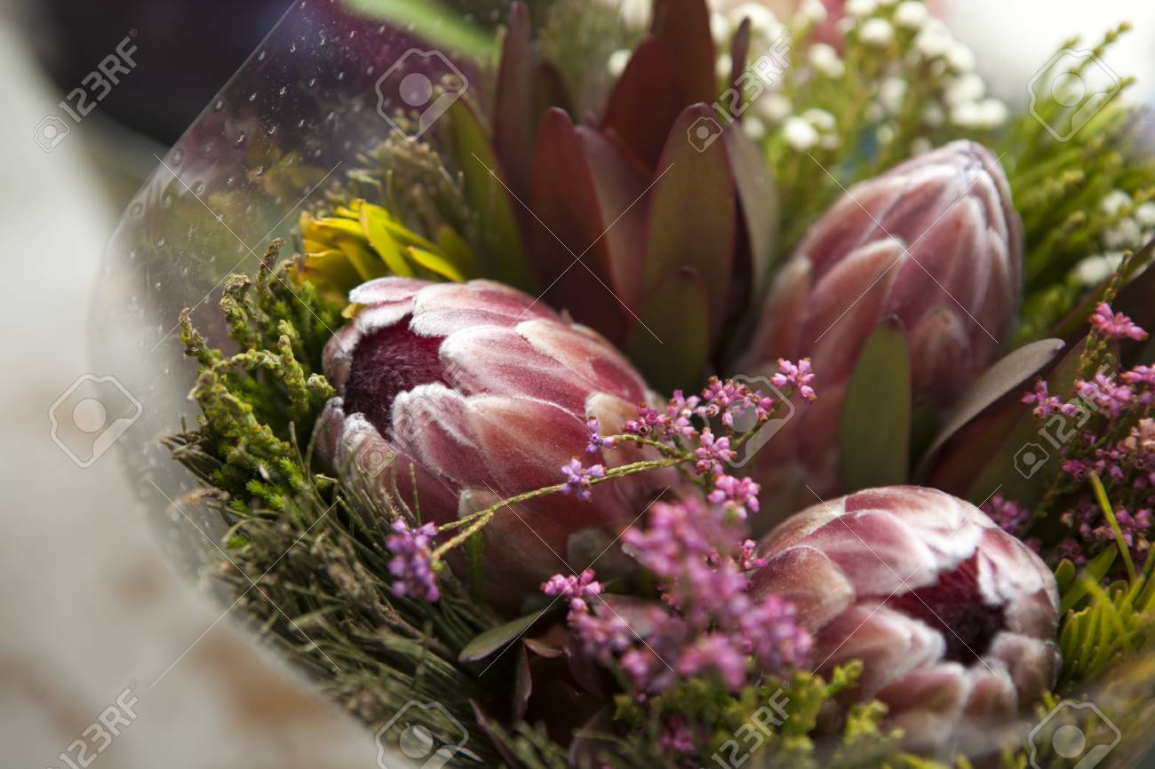 Spring Bouquet Of Red Protea, Waxflower A For A Special Wedding ...