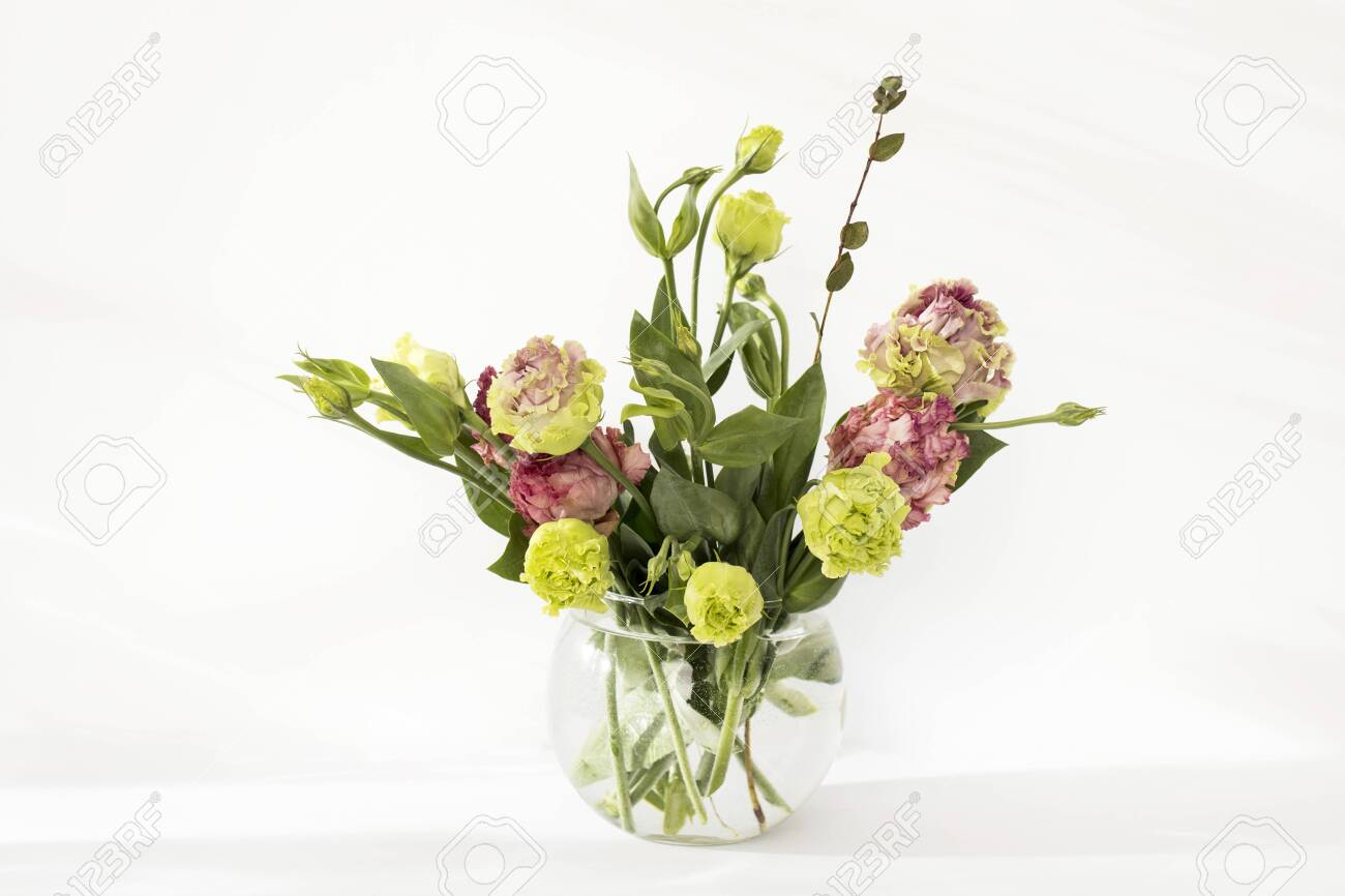 Bouquet Of Green And Pink Terry Lisianthus And Eucalyptus Branches Stock Photo Picture And Royalty Free Image Image 144807499