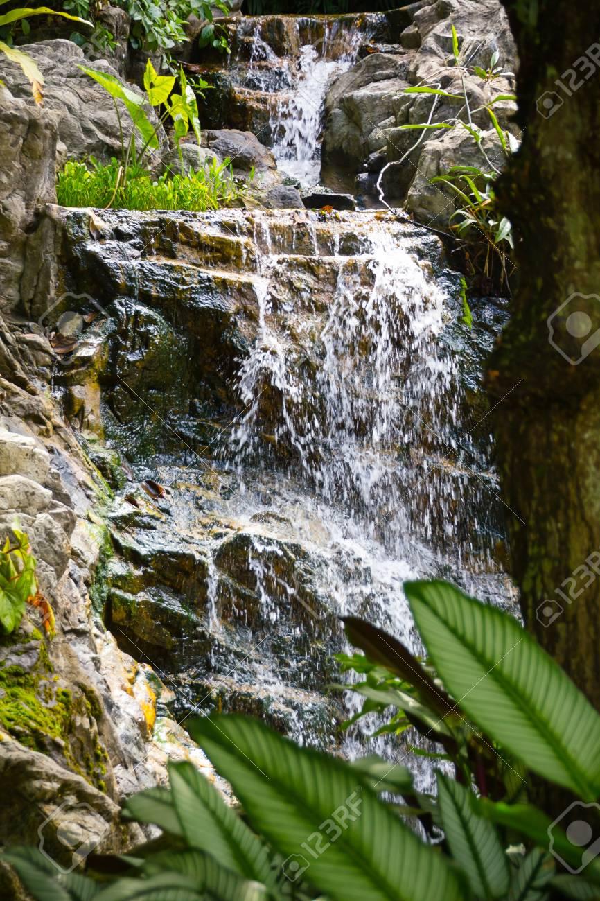 Singapore Botanic Gardens Waterfall Of Orchids