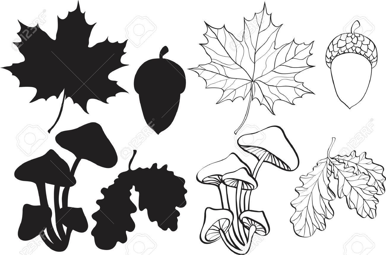 set of silhouette autumn plants Stock Vector - 7908855