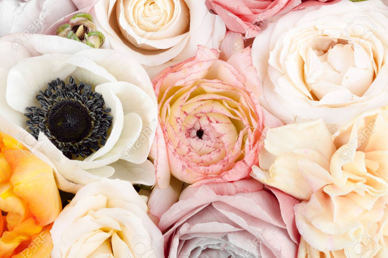 Amazing colorful flower bouquet close up stock photo picture and amazing colorful flower bouquet close up stock photo 55758271 izmirmasajfo