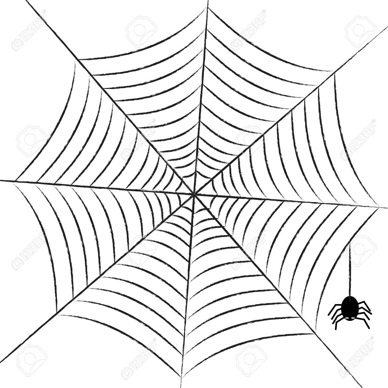 Web Spider Vector Vector Simple Web With