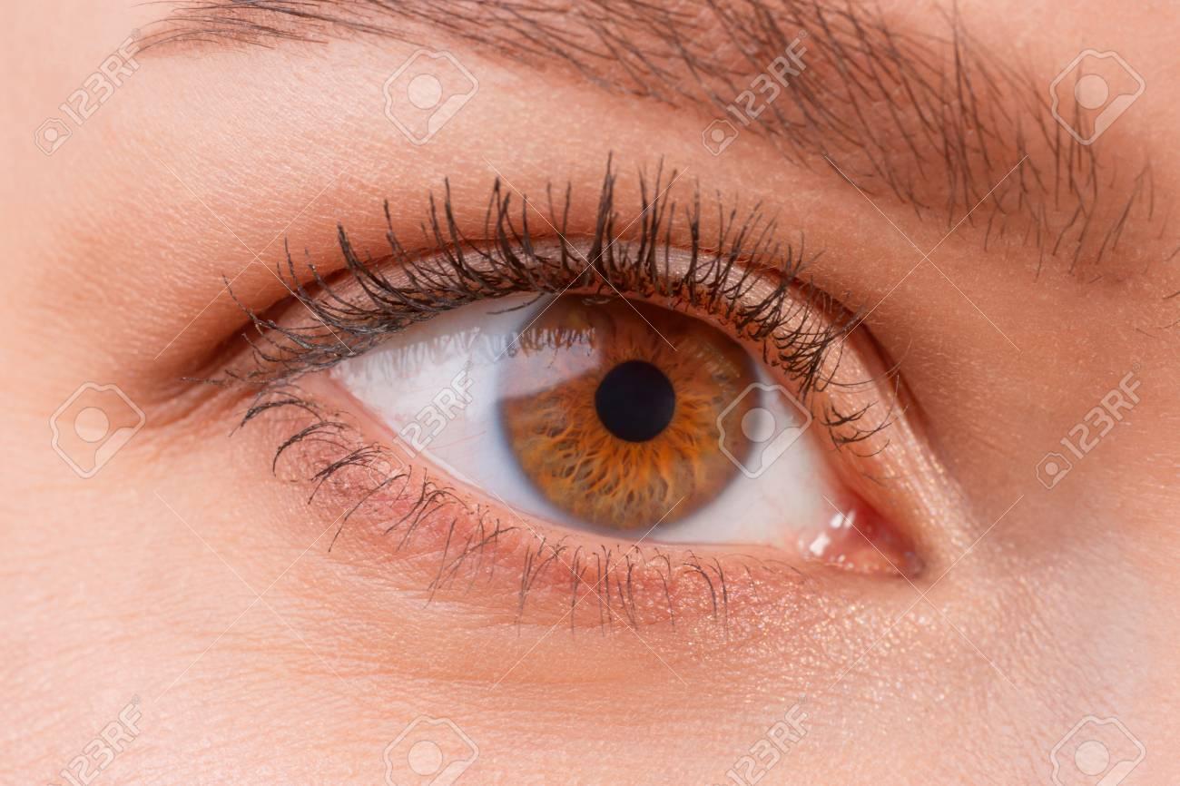 b38e576ce1 Cierre de vista de los ojos usando lentes de contacto marrones femeninos.  La buena visión