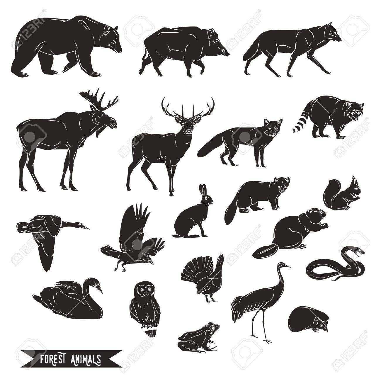 Forest animals silhouettes vintage. Vector illustration in line art isolated - 58817414